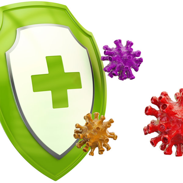 Dr. Böhm® Immun complex Tabletten