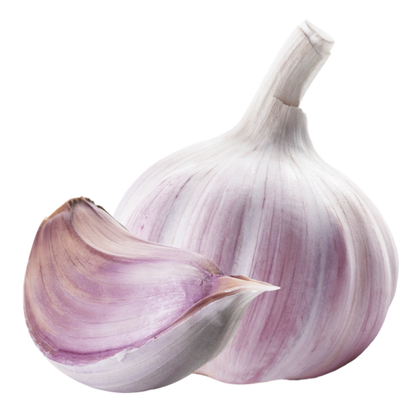 knoblauch dragees